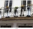 Bloembakken en balkon plantjes